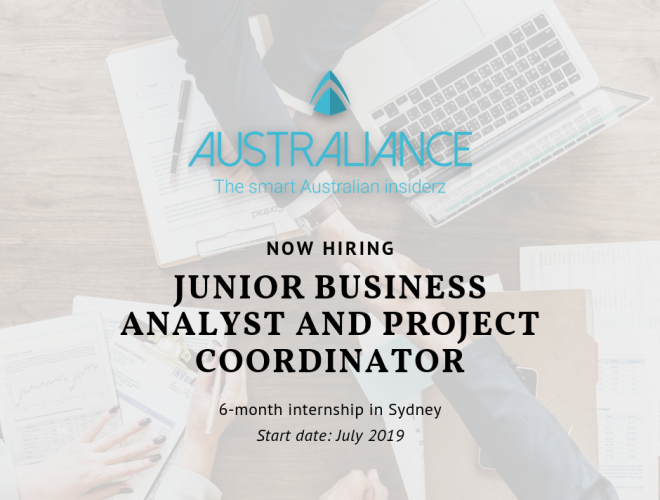 Internship offer: Junior Business Analyst and Project Coordinator